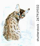 beautiful purebred cat with... | Shutterstock . vector #267919532