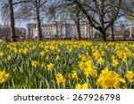 A Beautiful Springtime View Of...
