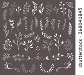 hand drawn floral design... | Shutterstock .eps vector #268041845