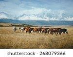Landscape With Wild Horses Nea...