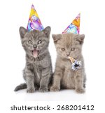 Stock photo two funny kittens with birthday hats isolated on white background 268201412