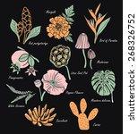 vintage flowers illustration 1   Shutterstock .eps vector #268326752