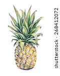pineapple on a white background.... | Shutterstock . vector #268412072