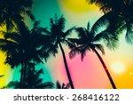 Silhouette Palm Tree   Vintage...