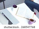 portrait of  businesswoman...   Shutterstock . vector #268547768