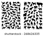 Stock vector cats and dogs silhouettes set 268626335