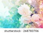Flower Background  With Garden...