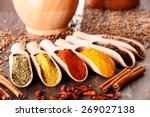 variety of spices on kitchen... | Shutterstock . vector #269027138