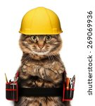 craftsman cat in white... | Shutterstock . vector #269069936
