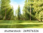 green park with trees in park... | Shutterstock . vector #269076326