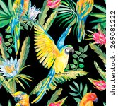 parrots and exotic flowers.... | Shutterstock .eps vector #269081222