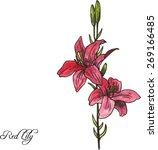 hand drawn watercolor vector... | Shutterstock .eps vector #269166485