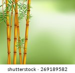 Illusration Of Bamboo On Old...