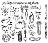 vegetables icon set on a white... | Shutterstock .eps vector #269213858