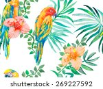 macaw seamless pattern. topical ... | Shutterstock .eps vector #269227592
