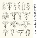 set of vector different types...   Shutterstock .eps vector #269357492