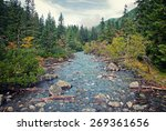 Mountain River In The Forest