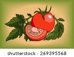 tomato on the green background. ... | Shutterstock .eps vector #269395568