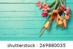 fresh  spring red tulips... | Shutterstock . vector #269880035