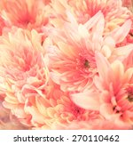 pattern and texture from... | Shutterstock . vector #270110462