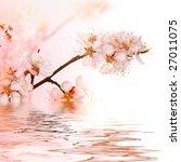 Fresh Spring Blossoms