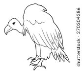 Vulture Outline Illustration