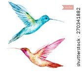 hummingbirds  watercolor ... | Shutterstock .eps vector #270341882