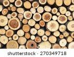 Pile Of Tree Stumps  Woods...
