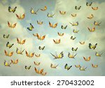 Many Colorful Butterflies...