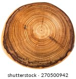 Wood Circle Texture Slice...