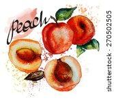 watercolor peach | Shutterstock .eps vector #270502505