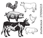 Set Of Farm Animals   Chicken ...
