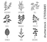 fresh herbs and spices icon set.... | Shutterstock .eps vector #270506885