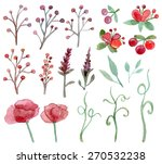 set of flower and leaf... | Shutterstock . vector #270532238