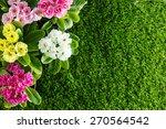 spring flowers   Shutterstock . vector #270564542