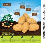 potato   infographics.... | Shutterstock .eps vector #270653648