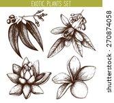 vector set of ink hand drawn...   Shutterstock .eps vector #270874058