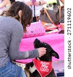 Small photo of NEW YORK CITY - APRIL 19 2015: Bark Avenue held pet rescue event in Carroll Park, Brooklyn, featuring ACC, ASPCA, Second Chance Animal Rescue & Sean Casey Animal Rescue & animals in need of a home