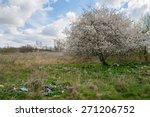 landfill and tree | Shutterstock . vector #271206752