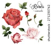 roses and leaves  watercolor ... | Shutterstock . vector #271250762