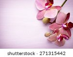 pink orchid flower. greeting... | Shutterstock . vector #271315442
