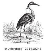 heron  vintage engraved...   Shutterstock .eps vector #271410248