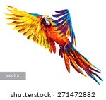 colorful parrots. beautiful... | Shutterstock .eps vector #271472882