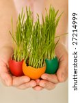 New life concept with easter eggs and grass in woman hands - shallow depth of field - stock photo