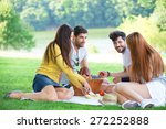 group of friends having picnic... | Shutterstock . vector #272252888