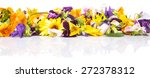 mix edible flower salad over... | Shutterstock . vector #272378312