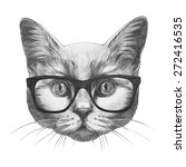Original Drawing Of Cat With...