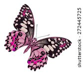 Beautiful Pink Butterfly In...