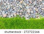 Fresh Spring Green Grass With...
