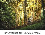 fairy forest and just married | Shutterstock . vector #272767982